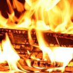 Palivové dřevo jako levné ekologické palivo