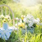 Vybudujte si na zahradě svoji oázu klidu